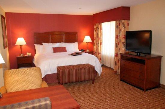 Hampton Inn and Suites Arcata, CA: King Studio Suite