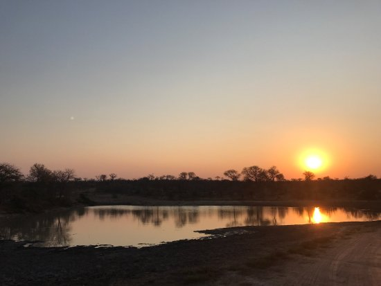 nThambo Tree Camp: photo2.jpg