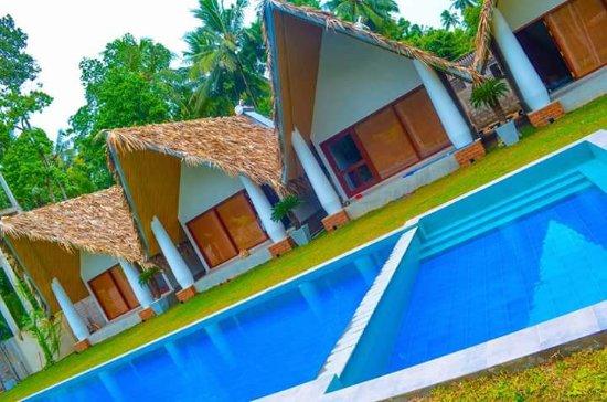 Katunayaka, Sri Lanka: image-0-02-03-7de9e755fe30f564672960262fceb2ed2800b460160f9c506d8216545d61fc16-V_large.jpg