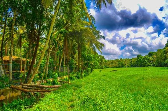 Katunayaka, Sri Lanka: image-0-02-03-57dbc6abc473dd73069a3a1c6b7a3746d86713d66a7fff80e2c2b66e9e23d3cb-V_large.jpg