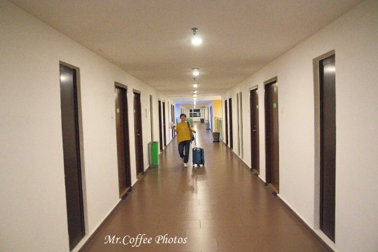 Foto de The Explorer Hotel
