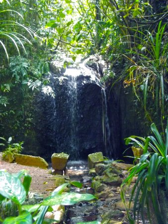 Mena Creek, Австралия: Teresa Falls
