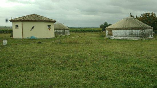 Salignac-sur-Charente照片