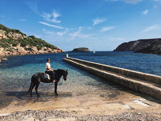 Cavalls Son Angel : An einer verlassenen Bucht