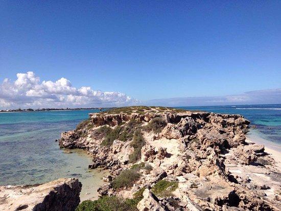 Green Head, ออสเตรเลีย: The amazing coastline nearby Miligan's Island campground.