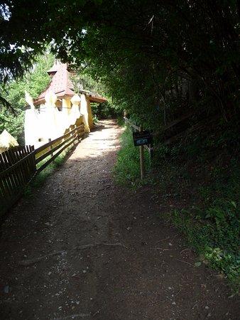 Estiria, Austria: Weg in den Wald