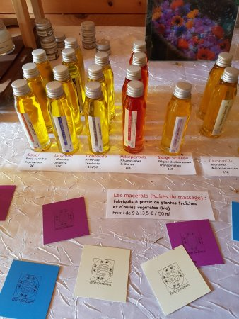 Saint-Pierre-de-Chartreuse, France : Products from the garden 2
