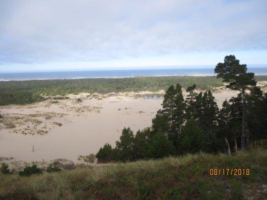 Oregon Dunes National Recreation Area: expansive dunes