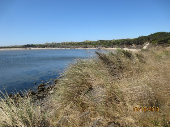 Oregon Dunes National Recreation Area: protected cove