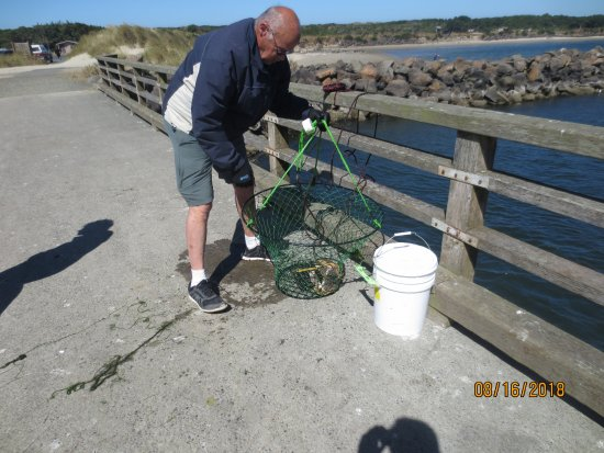 Reedsport, Oregón: fishing for Dungeness crabs