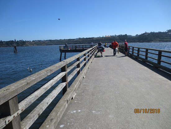 Reedsport, OR: south jetty