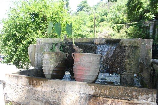 Piges Argiroupolis : Springs of Argiroupoli