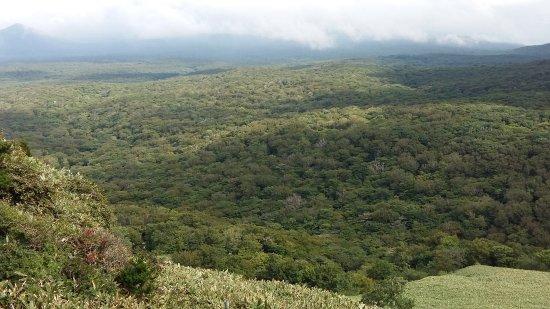 Hallasan National Park: 20170906_151234_large.jpg