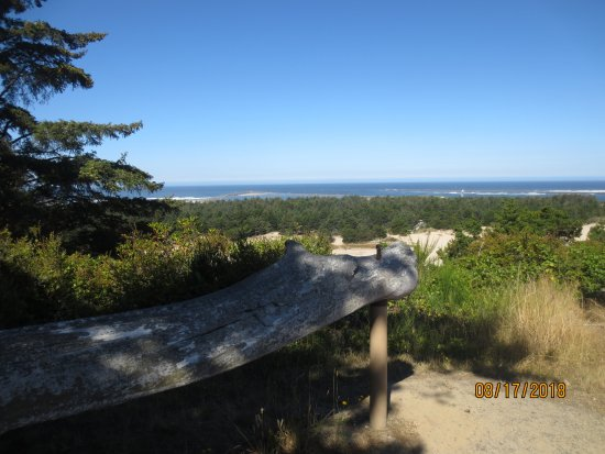 Winchester Bay, OR: view from bluff