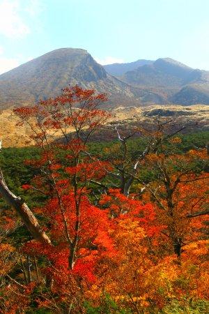 Ebino, Japón: 錦秋のえびの高原・その1