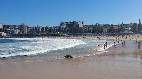 Coogee, Australia: Hotel am Cogee Beach