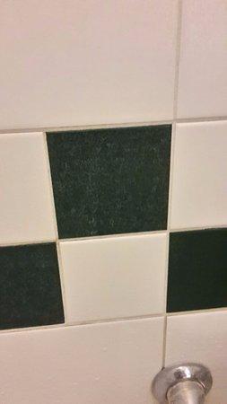 Legemeer, The Netherlands: dikke kalklaag op de badkamermuur