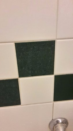 Legemeer, Nederland: dikke kalklaag op de badkamermuur