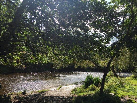 Alyn Waters Country Park: photo2.jpg