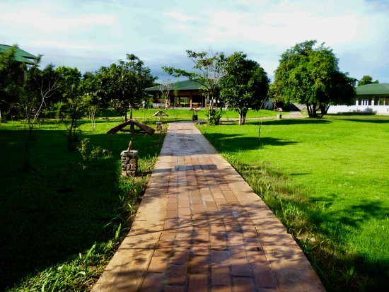 Camellia Resort and Spa: Pathway