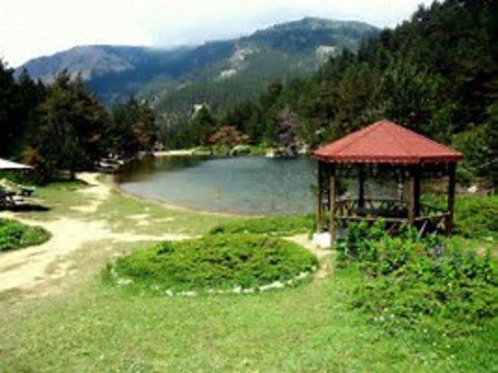 Dipsizgol Tabiat Parki