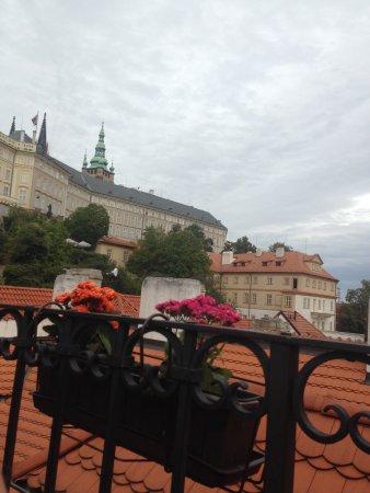 Most delicious vegan food in Prague