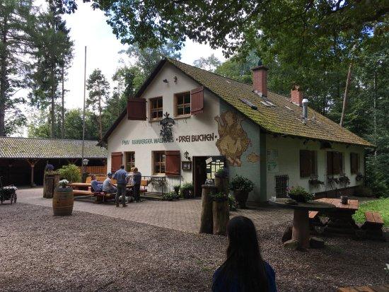Ramberg, Germany: Waldhaus Drei Buchen