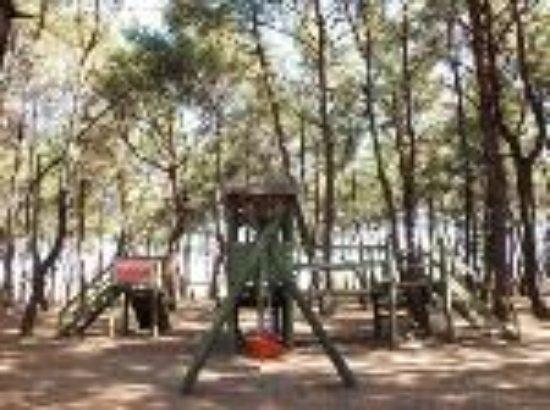 Efeoglu Tabiat Parki