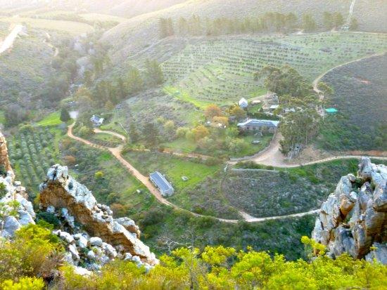 Overberg District, Güney Afrika: Our little slice of paradise!!