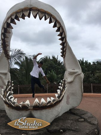 uShaka Marine World: Jumping on the shark jaws frame