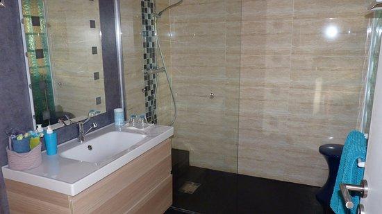 Libourne, Франция: Shower room
