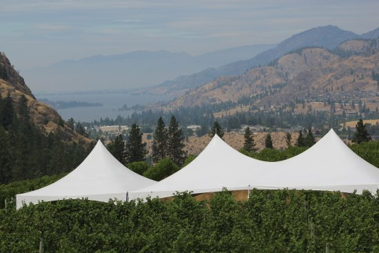 Okanagan Falls, Kanada: View over the wine yards to the lake