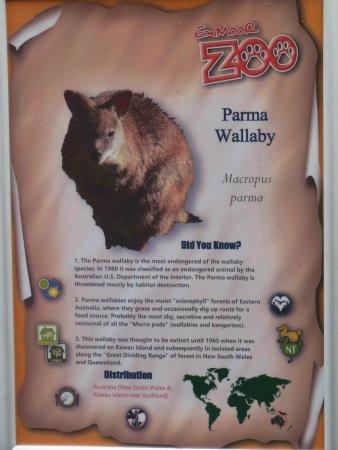 Barnstaple, UK: Example of Information poster.