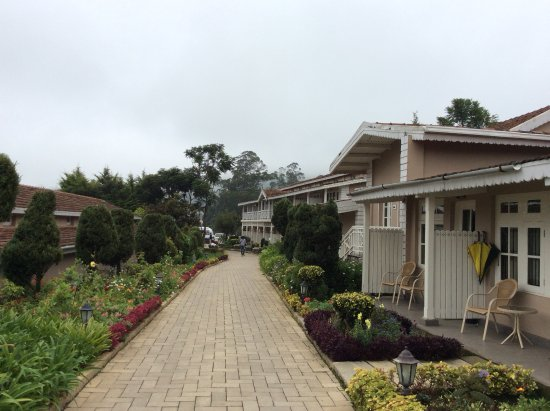 Club Mahindra Derby Green Ooty Resort Reviews Photos