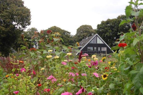 Eext, The Netherlands: Volop in bloei