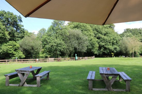 South Brent, UK : Garten mit Teich