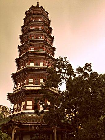 temple - 広州、六榕寺と六榕花...