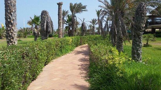 Hasdrubal Thalassa & Spa Djerba: Allée