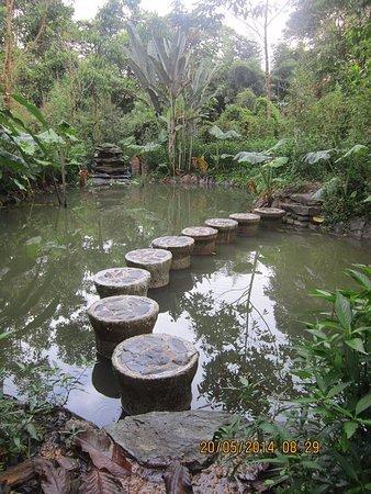 Mindo, Ekuador: Laguna en medio del laberinto
