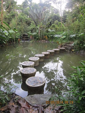 Mindo, Ισημερινός: Laguna en medio del laberinto