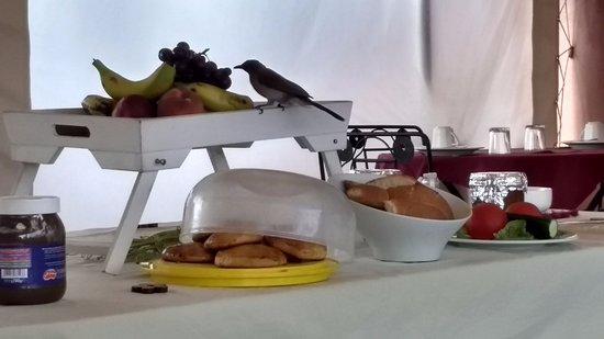 Palais Riad Calipau Marrakech: Desayuno super completo!!!