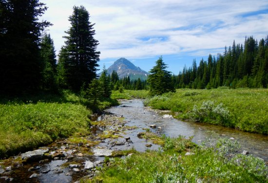 Peter Lougheed Provincial Park, Kanada: Chester Lake area