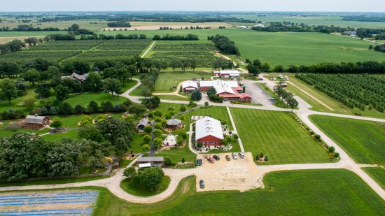 Harvard, IL: A view of Royal Oak Farm Orchard
