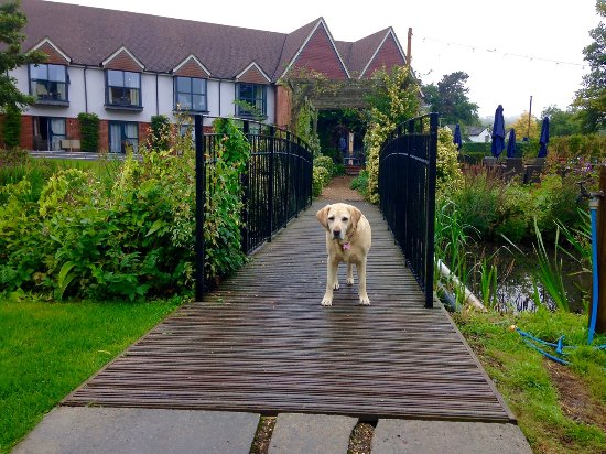 Streatley on Thames, UK: Crossing the bridge with the hotel in the background