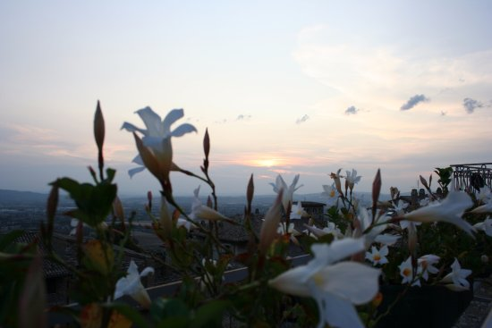 Hotel Umbra: View across flower box on roof patio, watching the sunset over Umbria.