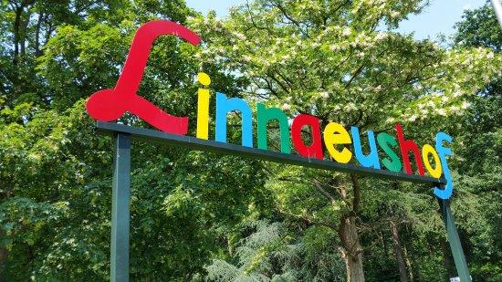 Linnaeushof in Bennebroek
