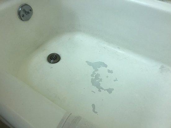 ออลบานี, ออริกอน: Scary tub that had been spray painted to cover up the worst parts.