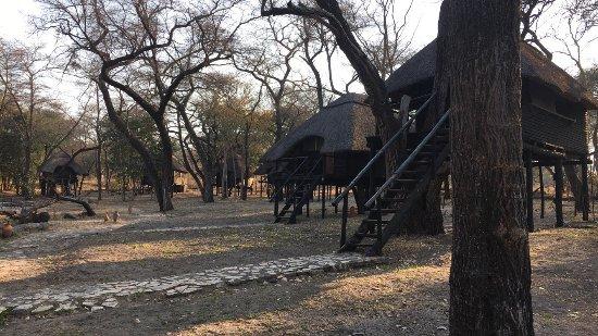 Hwange, Zimbabue: photo6.jpg