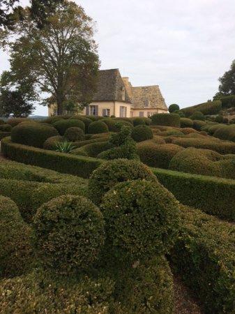 Vezac, فرنسا: Les buis des jardins de Marqueyssac