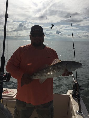 Reel salty fishing charters llc murrells inlet for Murrells inlet fishing charter